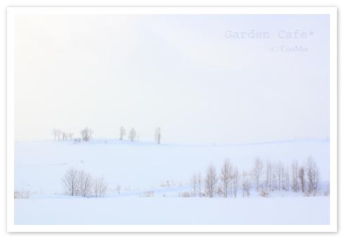 雪景色 ♪_a0097840_13415011.jpg