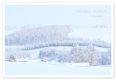 雪景色 ♪_a0097840_1342490.jpg
