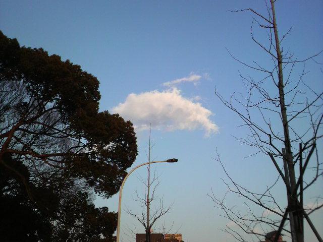 雲っていいよねぇなんか見てて飽きないって言うかちなみに僕が好きな雲は「入道雲」_e0219369_19421754.jpg