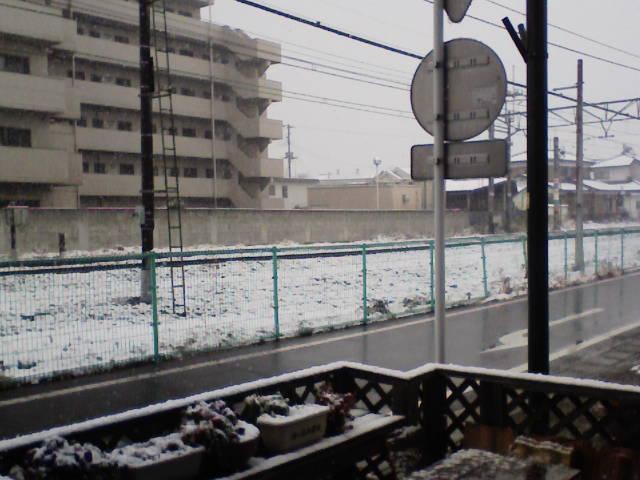 雪が・・・・_c0066693_18331641.jpg