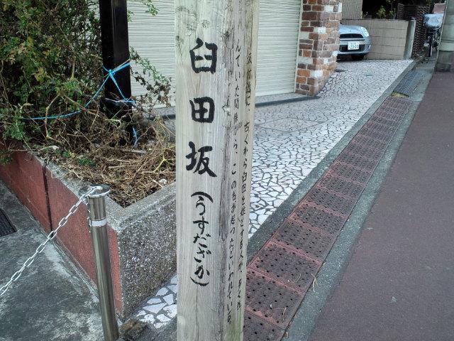 長岡輝子の画像 p1_16