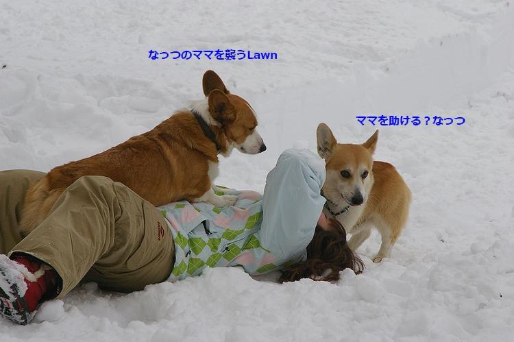 c0127703_2213586.jpg