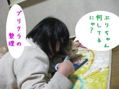 b0151748_1224183.jpg