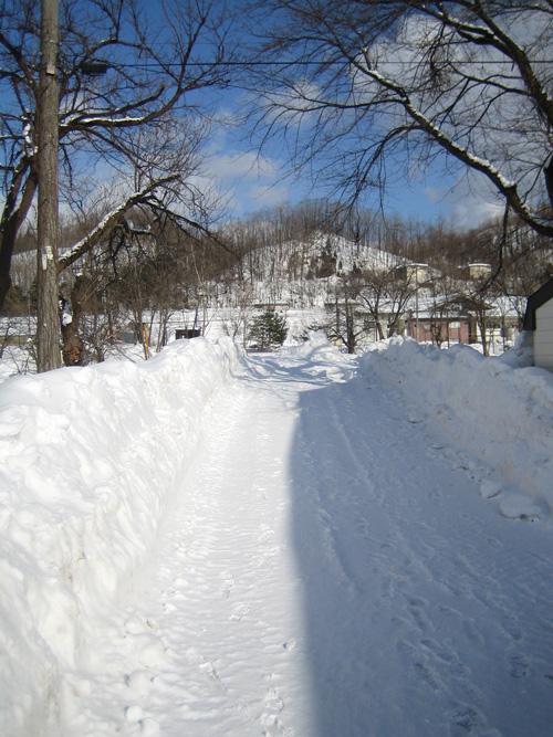 冬の小山_f0079071_14194972.jpg