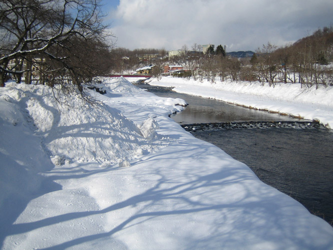 冬の小山_f0079071_14195844.jpg