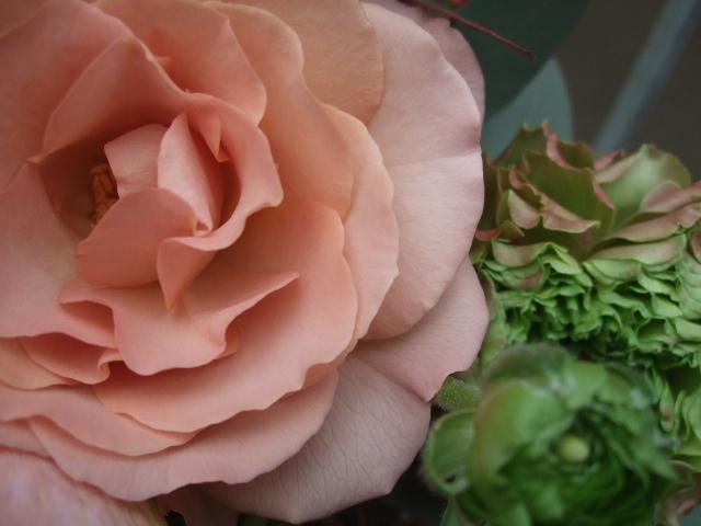 オークリーフ(アマリリス・リロナと薔薇・シュナーベルのアレンジメント)_f0049672_11165810.jpg
