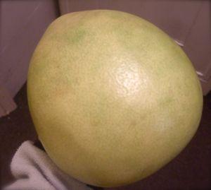 「酸っぱくないレモン」と「最高においしい巨大かんきつポメロ」_e0030586_049168.jpg