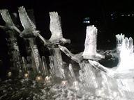 雪あかり見ました!_f0177390_18243840.jpg