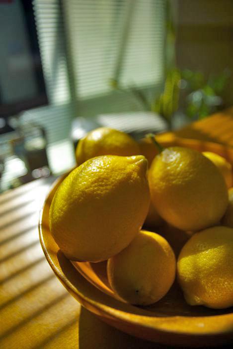 檸檬    ~ Harvest ~_c0127403_027478.jpg