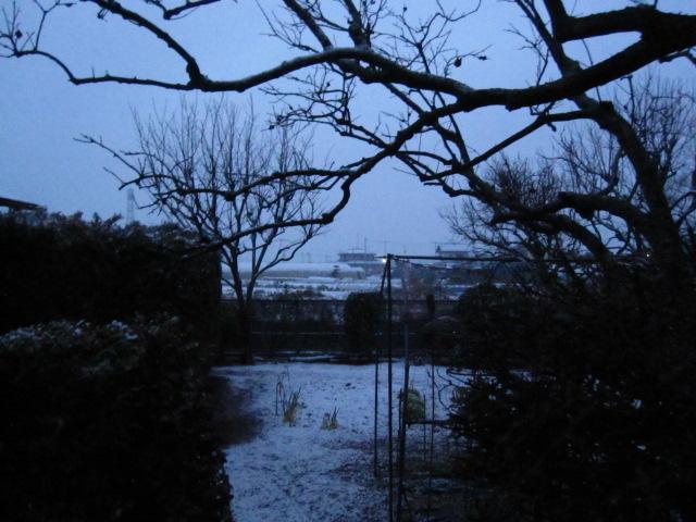 寒い一日_c0200314_18565770.jpg