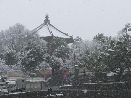 奈良のゆき_e0030917_16345859.jpg