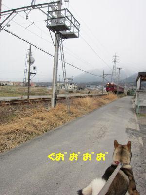 f0143123_2012176.jpg