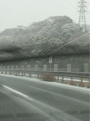 雪のアジリティー競技会_f0098338_2281872.jpg
