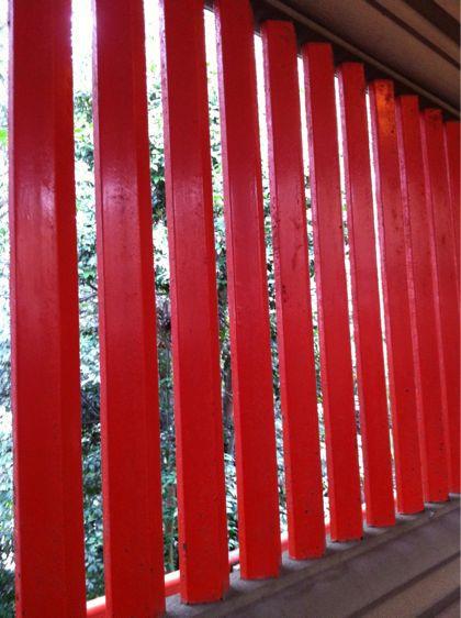 椿神社へ行きました。_f0099147_1948884.jpg
