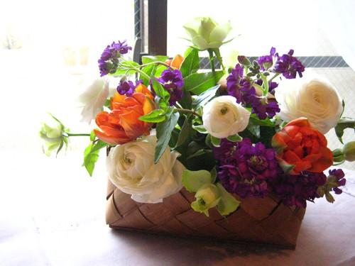花が春を運んできます。_d0139350_15184946.jpg