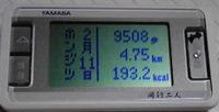 f0065954_1992923.jpg