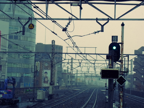 Snow in Tokyo_e0057760_2328546.jpg