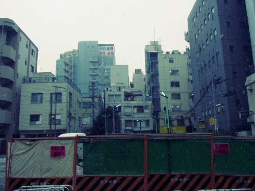 Snow in Tokyo_e0057760_232938.jpg