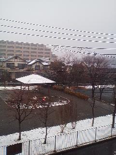 はっつぉーずぃ(八王子)は雪景色_d0169072_1140618.jpg