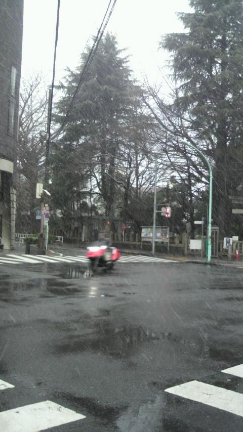雪なのに_a0075684_18365060.jpg
