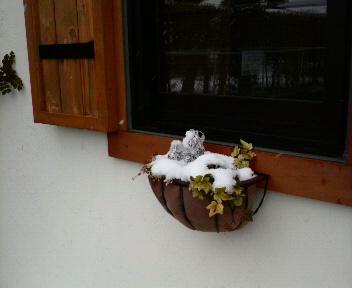 雪、、、ゆき、、、_d0178587_12563897.jpg