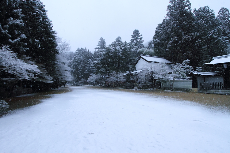 雪の神護寺_e0051888_21395630.jpg