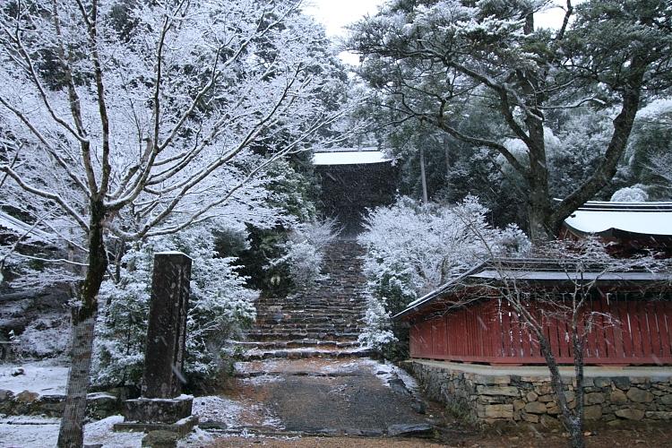 雪の神護寺_e0051888_21402059.jpg