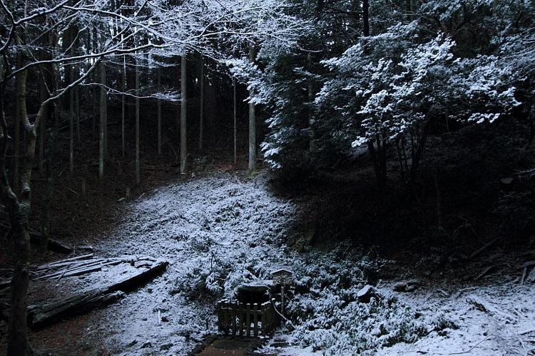 雪の神護寺_e0051888_21424060.jpg