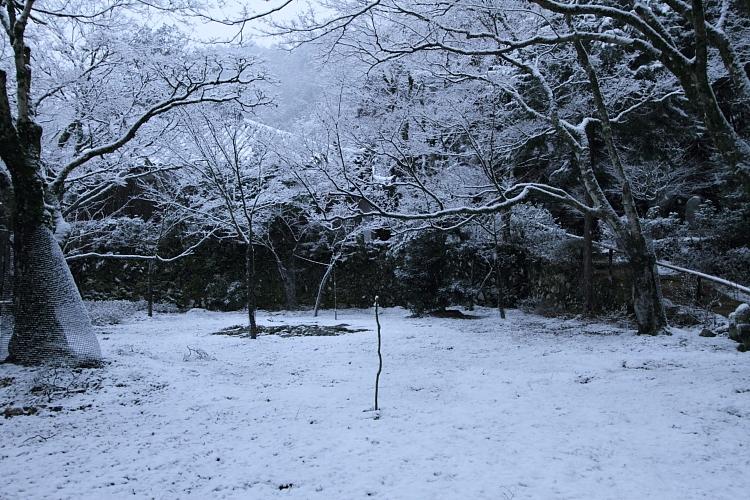 雪の神護寺_e0051888_21432411.jpg
