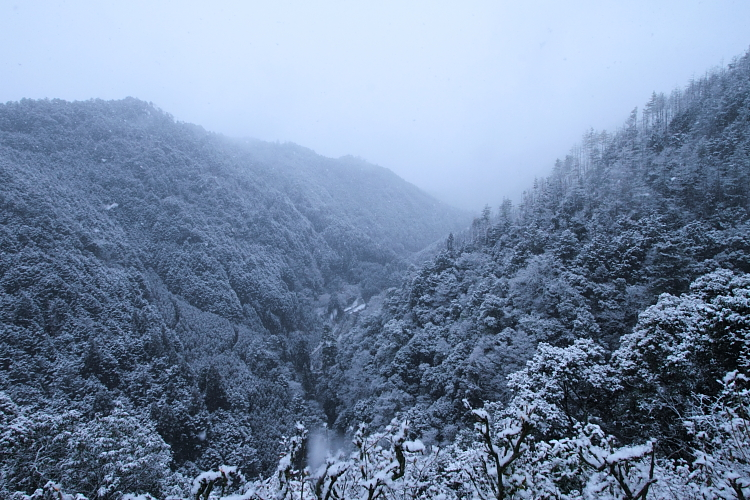 雪の神護寺_e0051888_21435837.jpg