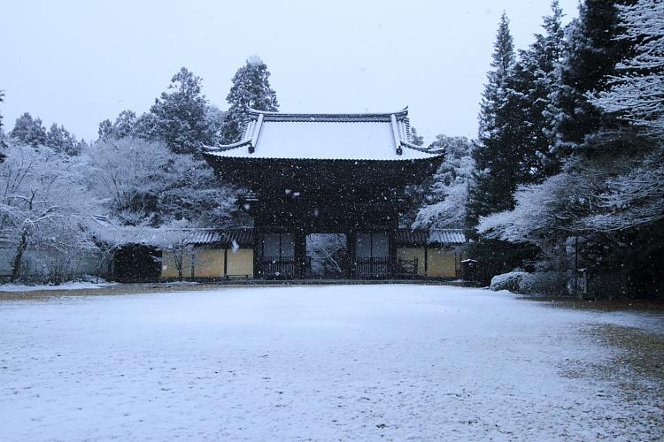 雪の神護寺_e0051888_21441940.jpg
