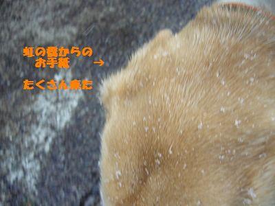 メール送受信_e0222588_15514669.jpg