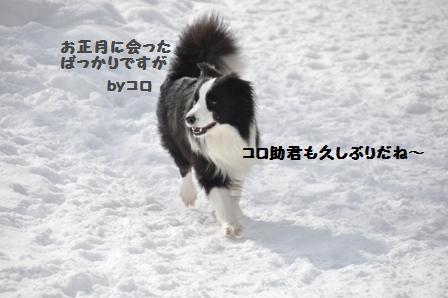 f0212597_1152979.jpg
