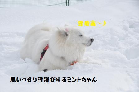 f0212597_11544171.jpg