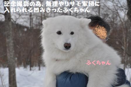 f0212597_120223.jpg