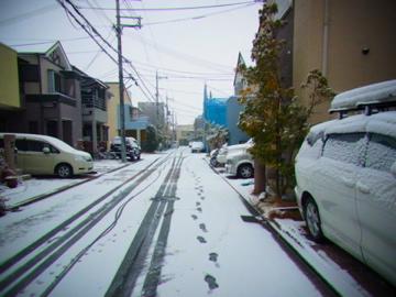 雪やぁぁぁ!!_f0136098_2324711.jpg