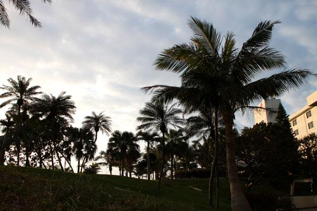 沖縄離島めぐり 宮古島2_e0048413_22173635.jpg