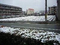 久しぶりの雪景色_c0133422_21381532.jpg