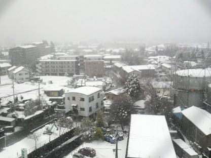 雪の別れ_e0222836_215245.jpg