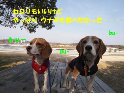 c0119142_1624502.jpg