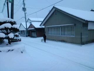 今日のかわうち村_d0027486_6371497.jpg