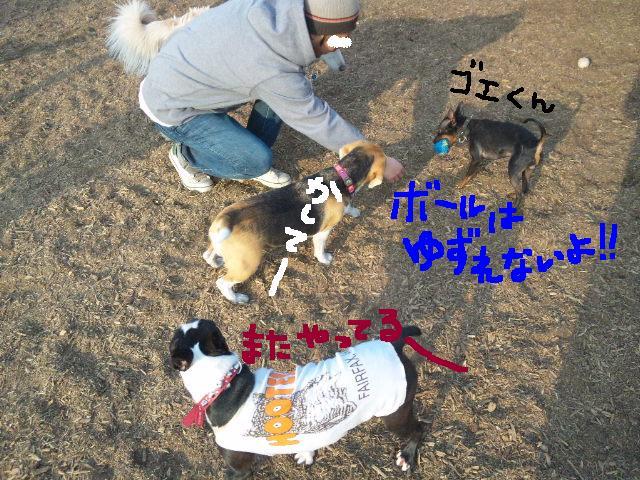 5白黒★舎人ランラン…肉?!ツアー第2弾★ラン編_d0187891_16534887.jpg