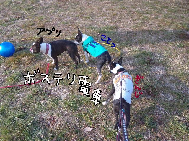 5白黒★舎人ランラン…肉?!ツアー第2弾★ラン編_d0187891_1658574.jpg
