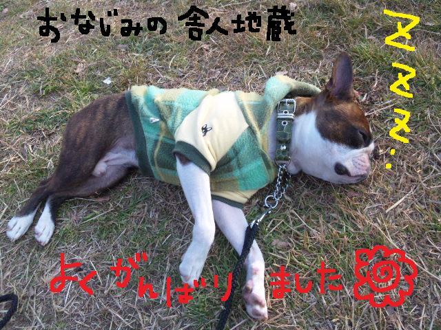 5白黒★舎人ランラン…肉?!ツアー第2弾★ラン編_d0187891_16593549.jpg