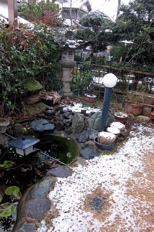 鳥のなる木/CP+/初積雪_b0024798_9284537.jpg