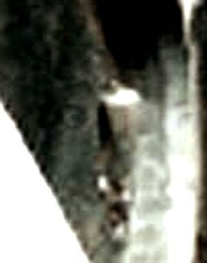 e0103408_19373657.jpg