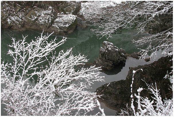 雪を撮ろう_c0042324_21444541.jpg