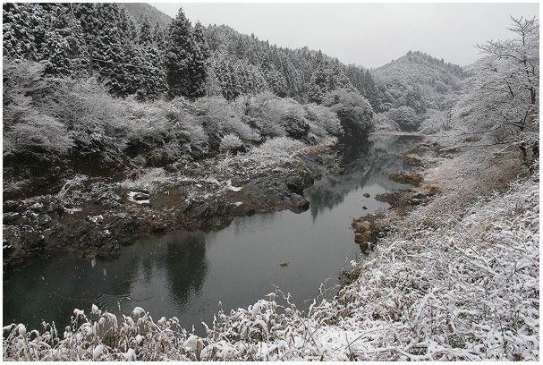 雪を撮ろう_c0042324_21445525.jpg