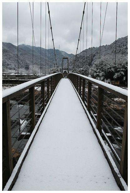 雪を撮ろう_c0042324_2145764.jpg