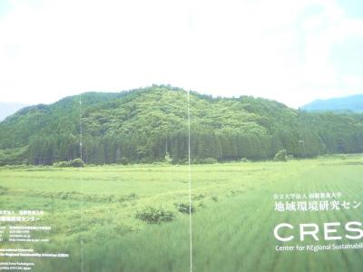 農村の元気_b0084826_9211175.jpg